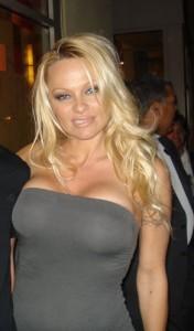 Pamela Anderson Charlotte Mecklenburg Divorce Lawyer North Carolina Family Law Attorney