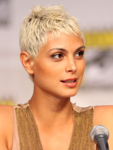 Morena Baccarin Charlotte Divorce Lawyer Mecklenburg Family Attorney