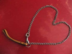 Heart-Pet-leash-Charlotte-Divorce-Lawyer-300x225