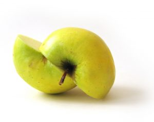 divided-apple-split-assets-Charlotte-Monroe-Lake-Norman-Divorce-Lawyer-300x239